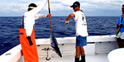 Deep Sea Fishing Orange Beach - FAQs